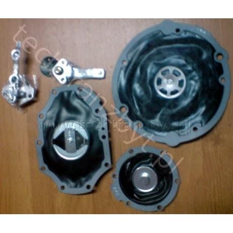 Zestaw naprawczy parownika gazu do wózka Linde (od 2007 r.) ASISAN NIKKI silnik MITSUBISHI